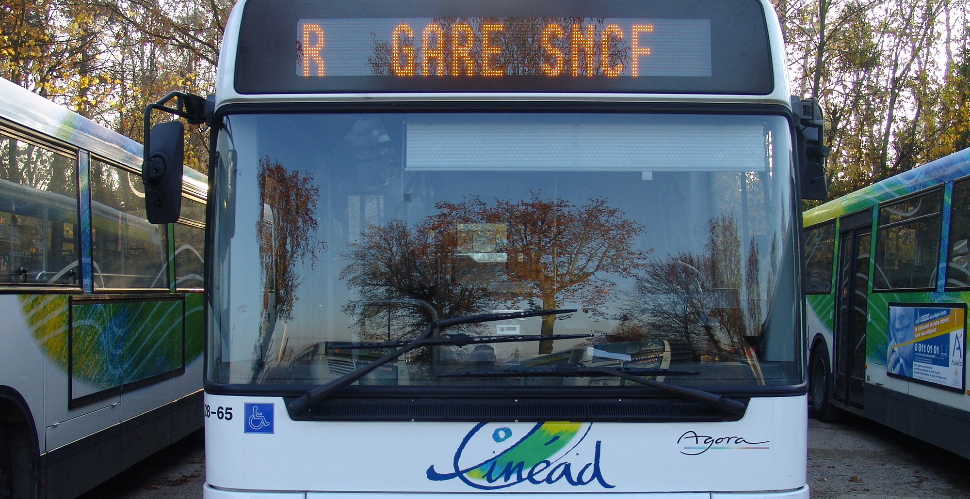 Bus Linead
