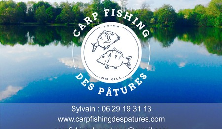 Carp Fishing Des Pâtures